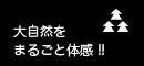 daishizen.jpg